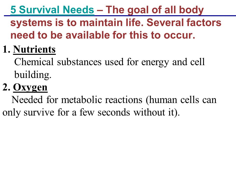 Chemical substances used for energy and cell building. 2. Oxygen