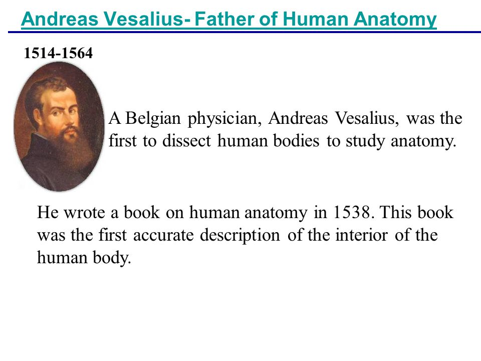 Andreas Vesalius- Father of Human Anatomy