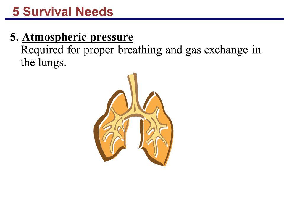 5 Survival Needs 5.