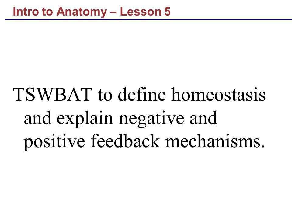 Intro to Anatomy – Lesson 5