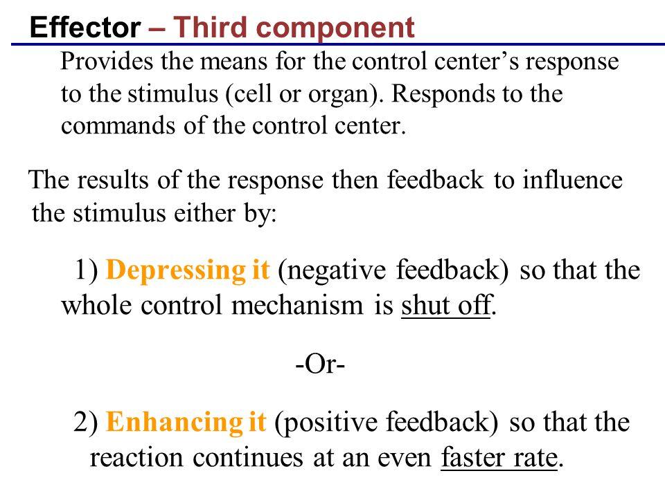 Effector – Third component