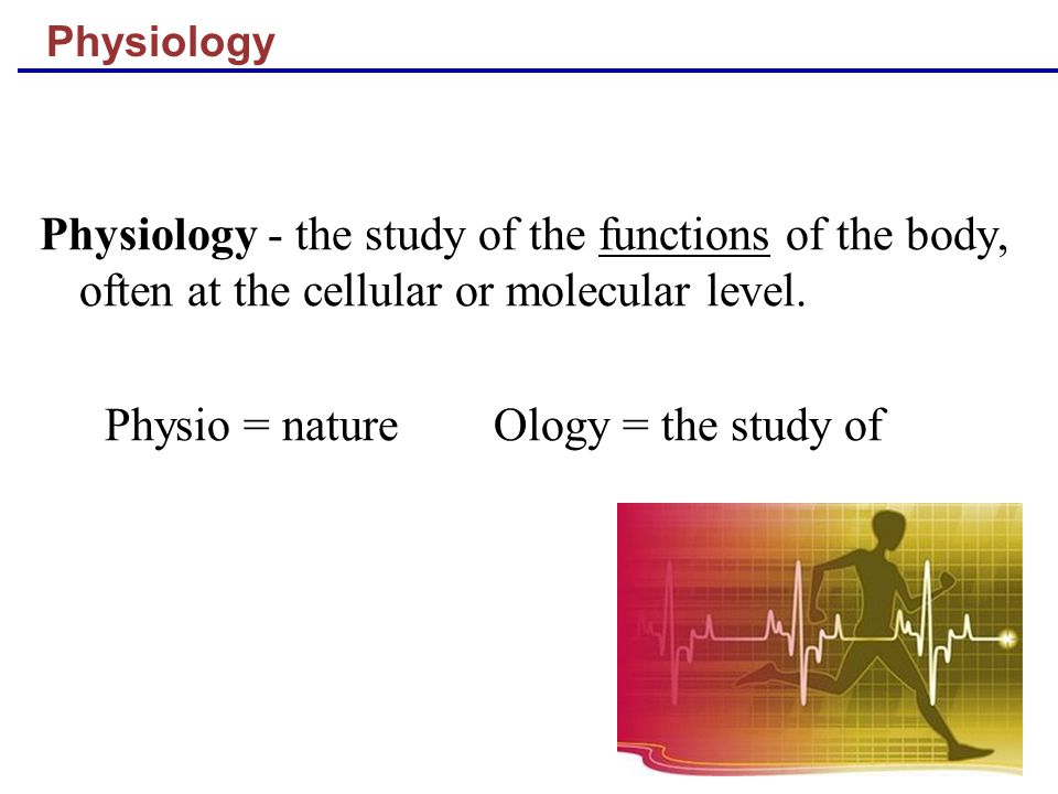Physio = nature Ology = the study of