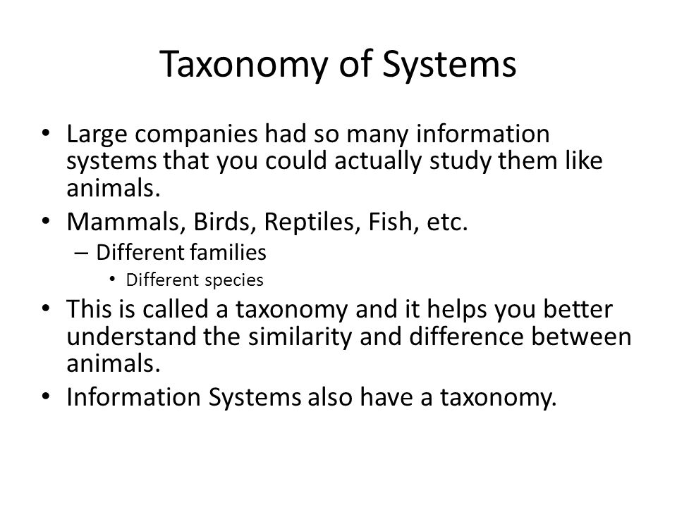 Taxonomy of Systems Large companies had so many information systems that you could actually study them like animals.