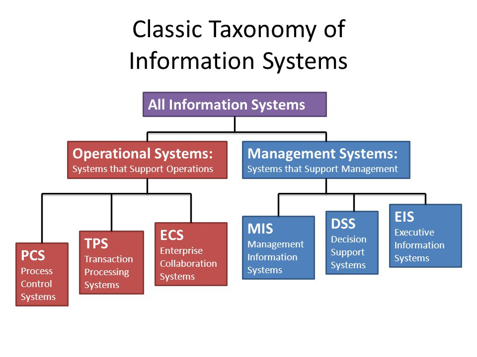 Classic Taxonomy of Information Systems