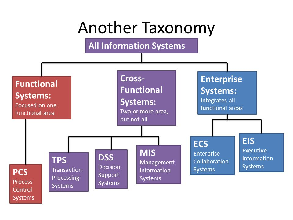 Another Taxonomy All Information Systems Cross-Functional Systems: