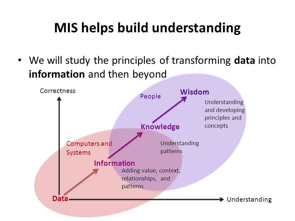 MIS helps build understanding