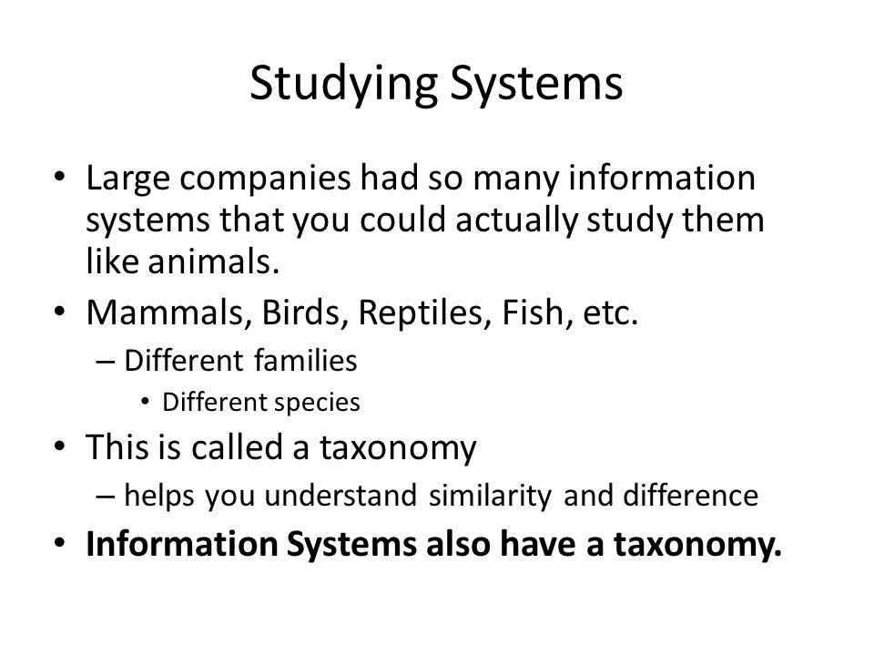 Studying Systems Large companies had so many information systems that you could actually study them like animals.