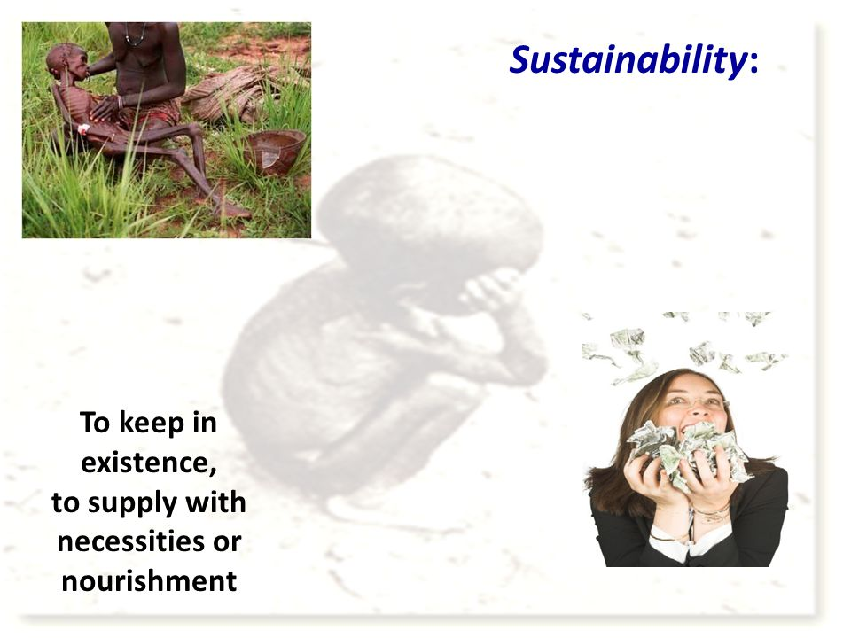 Sustainability: To keep in existence, to supply with necessities or