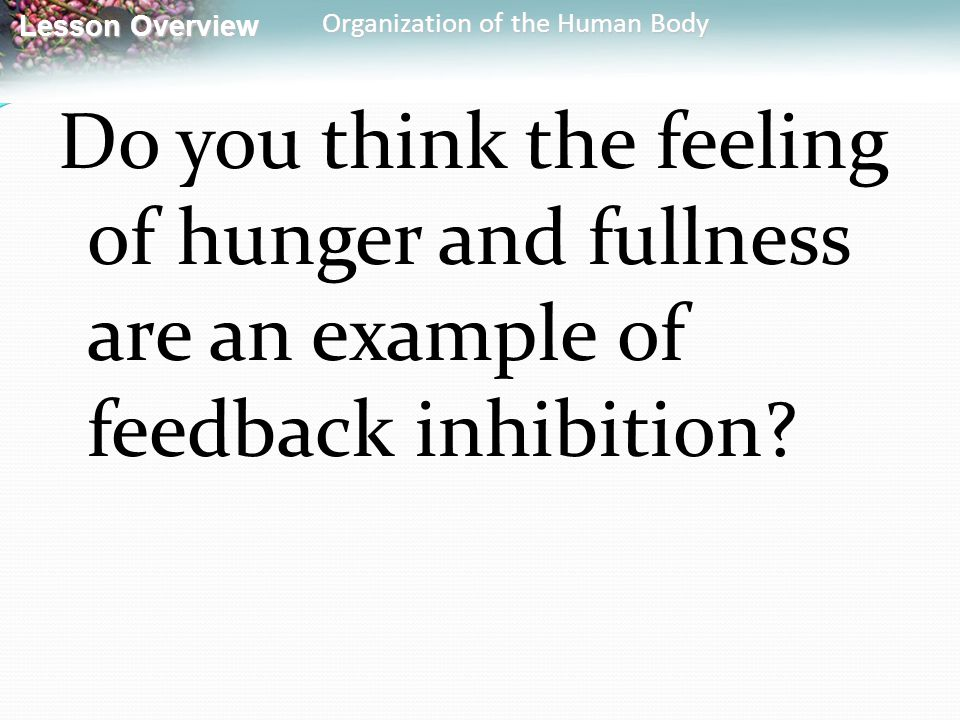 Do you think the feeling of hunger and fullness are an example of feedback inhibition