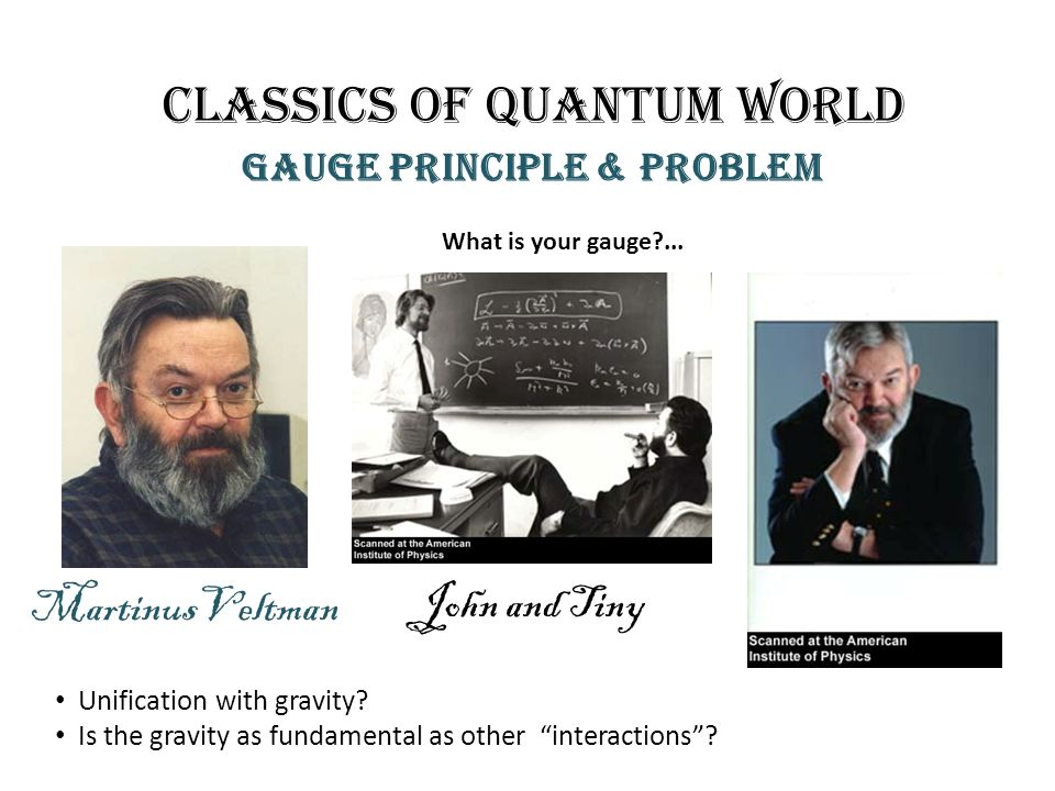 Classics of quantum world Gauge principle & problem