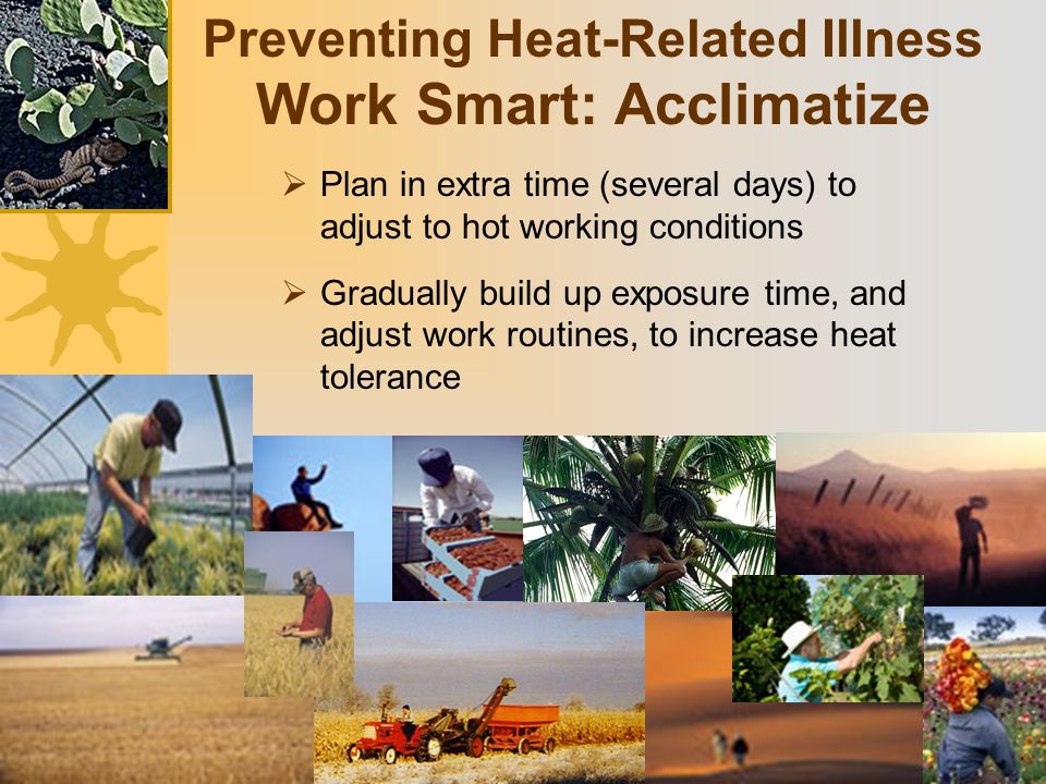 Preventing Heat-Related Illness Work Smart: Acclimatize