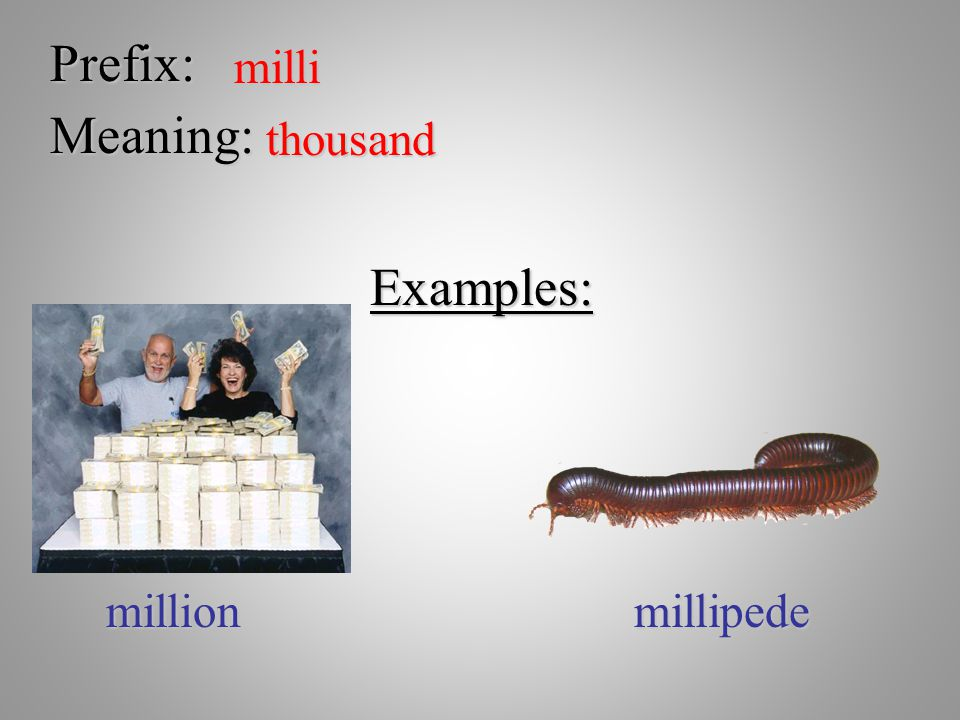 Prefix: milli Meaning: thousand Examples: million millipede