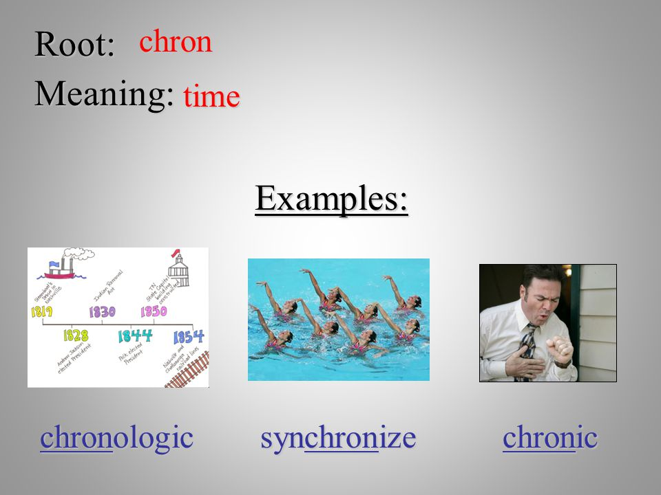Root: chron Meaning: time Examples: chronologic synchronize chronic