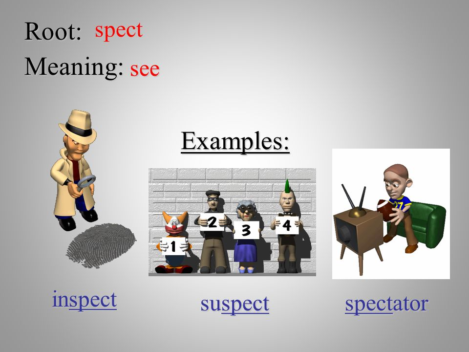 Root: spect Meaning: see Examples: inspect suspect spectator