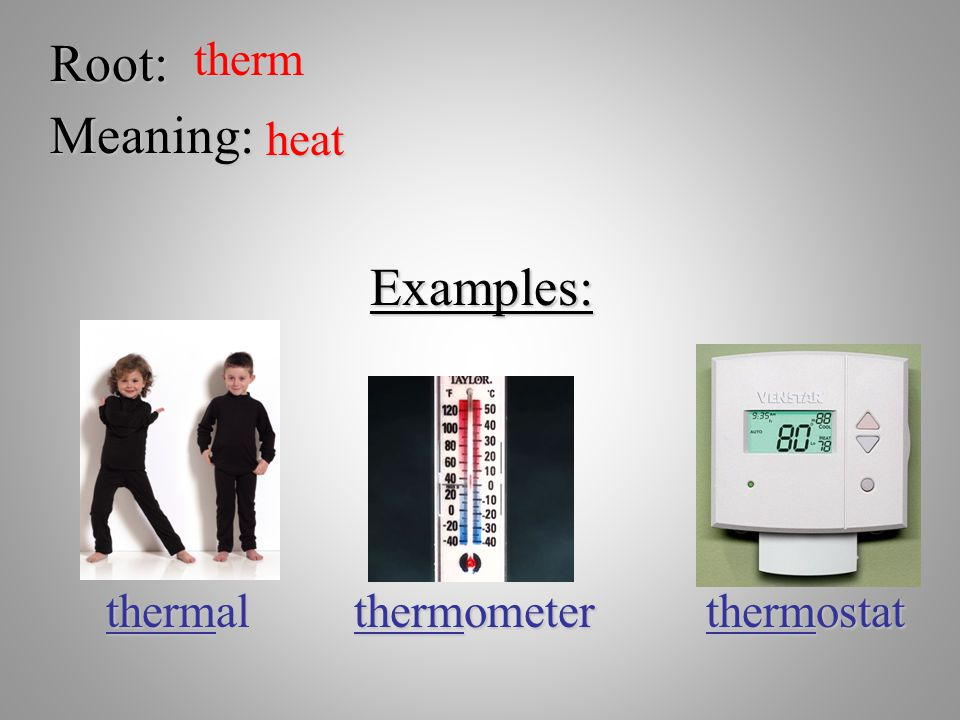 Root: therm Meaning: heat Examples: thermal thermometer thermostat