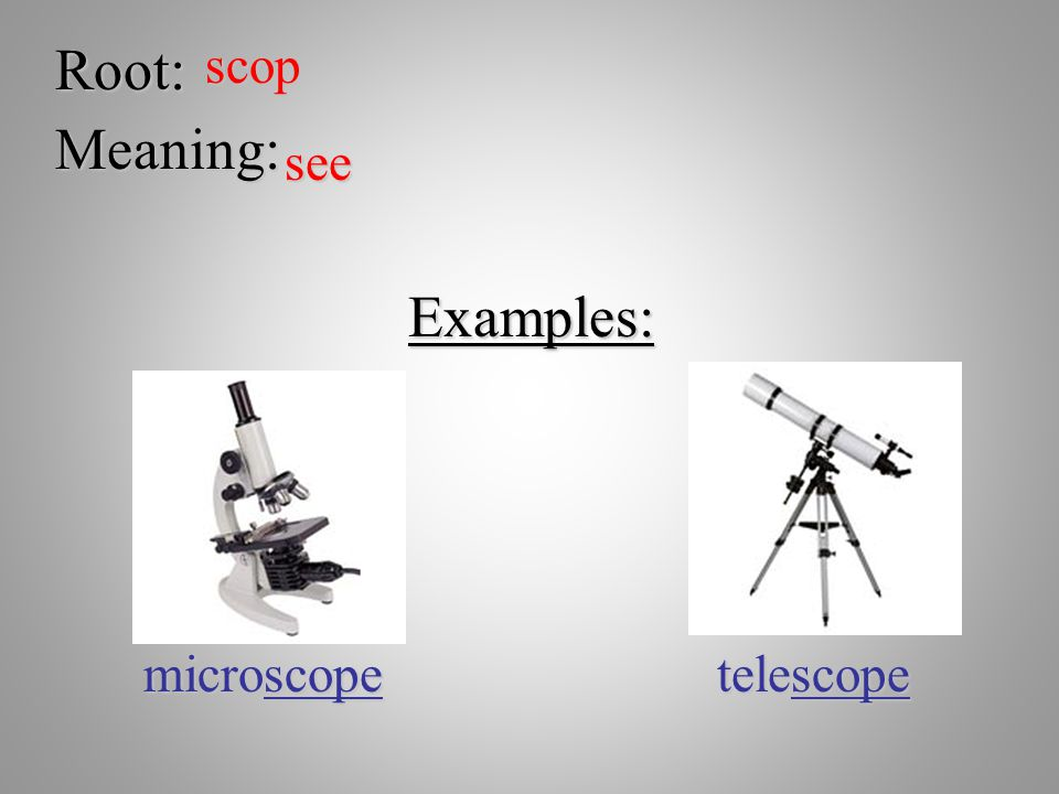Root: scop Meaning: see Examples: microscope telescope