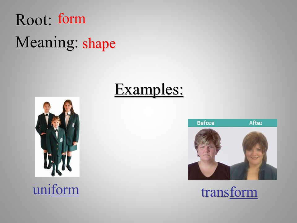 Root: form Meaning: shape Examples: uniform transform