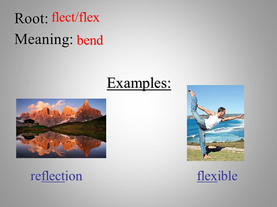 Root: flect/flex Meaning: bend Examples: reflection flexible