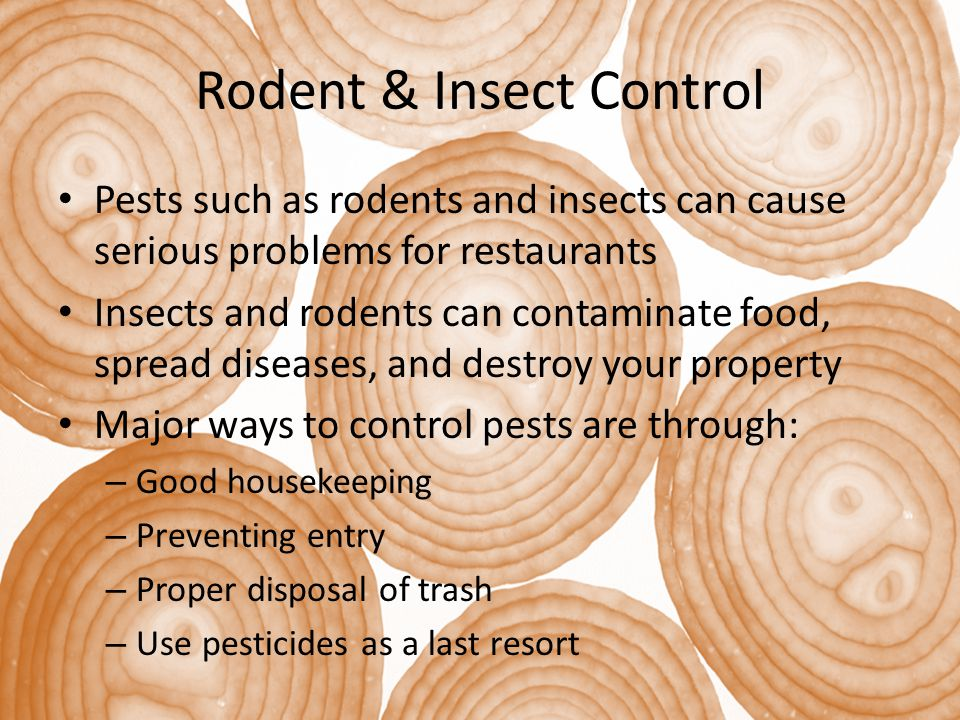 Rodent & Insect Control