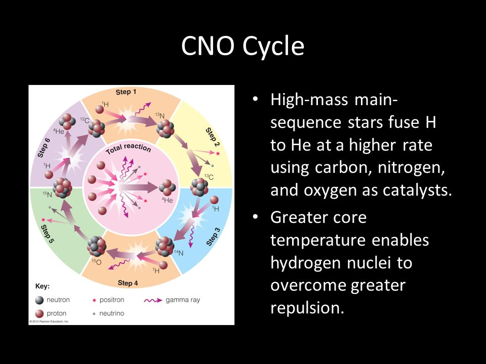 CNO Cycle High-mass main-sequence stars fuse H to He at a higher rate using carbon, nitrogen, and oxygen as catalysts.