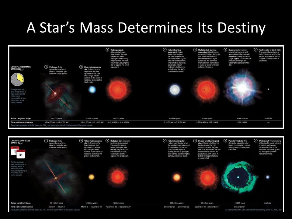 A Star's Mass Determines Its Destiny