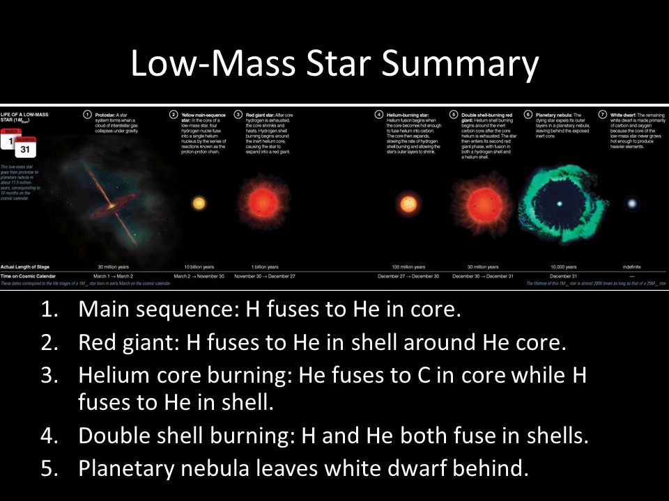 Low-Mass Star Summary Main sequence: H fuses to He in core.