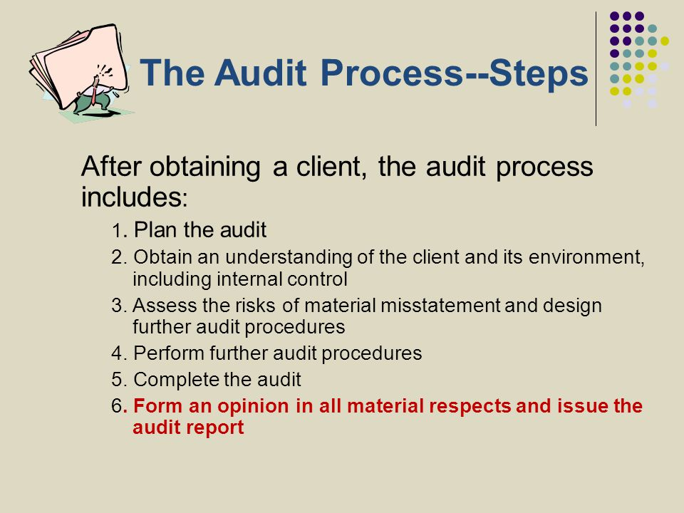 The Audit Process--Steps