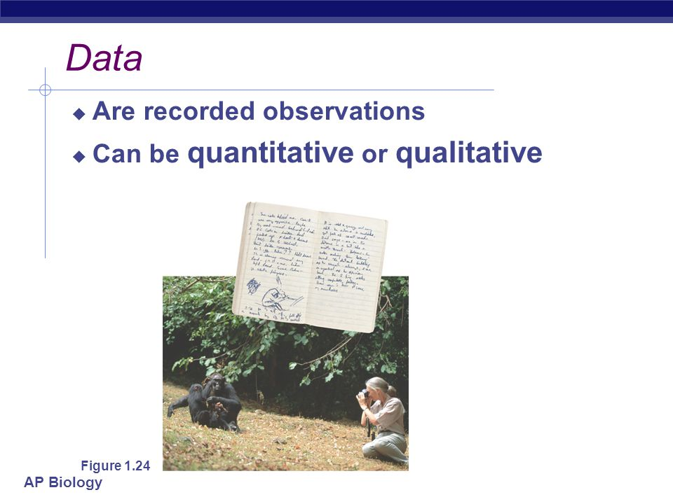Data Are recorded observations Can be quantitative or qualitative