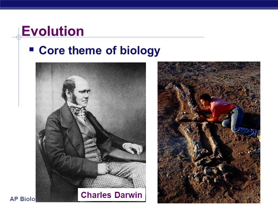 AP Biology Evolution Core theme of biology Charles Darwin