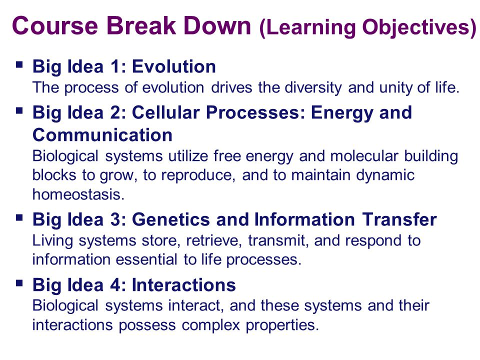Course Break Down (Learning Objectives)