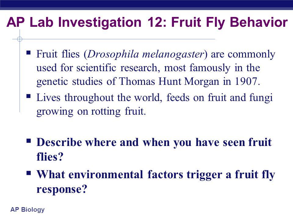ap biology essay question on fungi