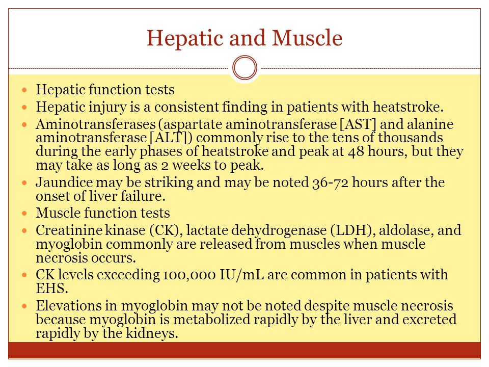 Hepatic and Muscle Hepatic function tests