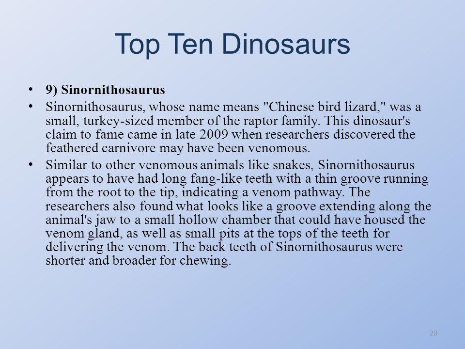 Top Ten Dinosaurs 9) Sinornithosaurus