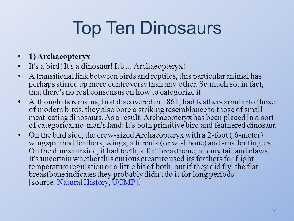Top Ten Dinosaurs 1) Archaeopteryx