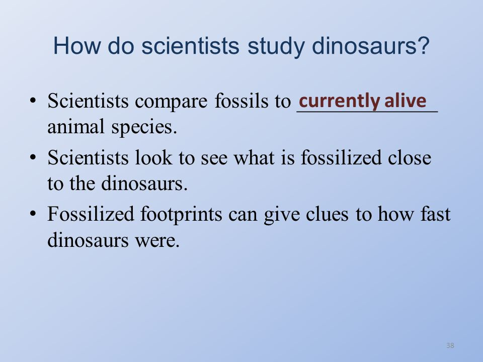 How do scientists study dinosaurs