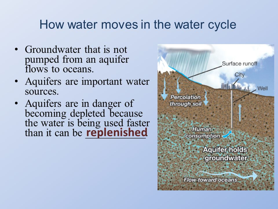 How water moves in the water cycle