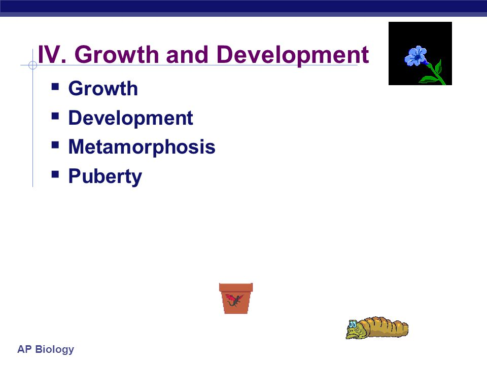 IV. Growth and Development