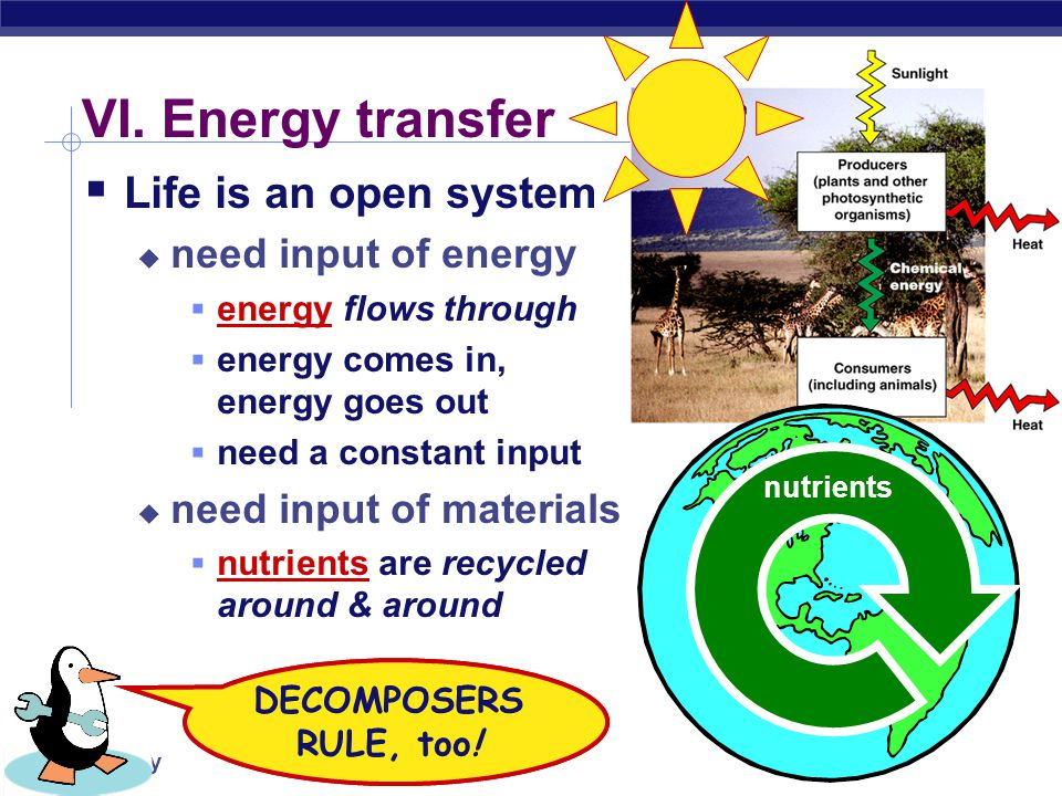 VI. Energy transfer Life is an open system need input of energy
