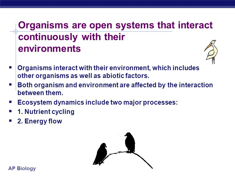 Organisms are open systems that interact continuously with their environments