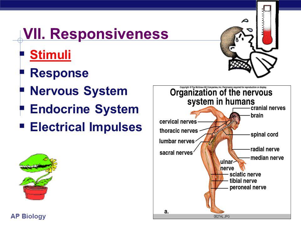 VII. Responsiveness Stimuli Response Nervous System Endocrine System