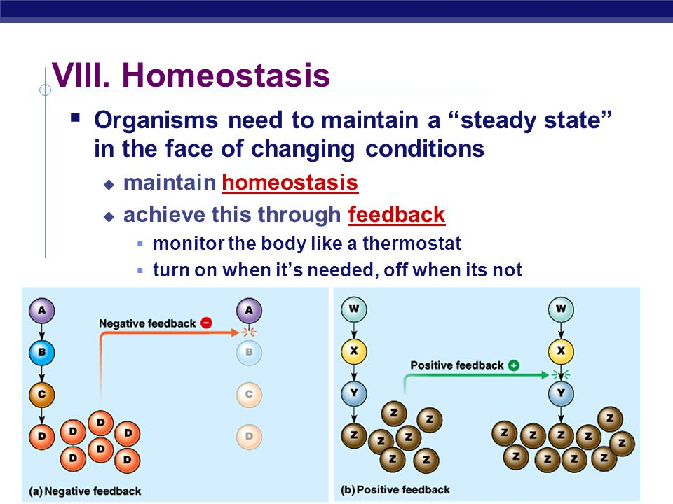 VIII. Homeostasis Organisms need to maintain a steady state in the face of changing conditions. maintain homeostasis.