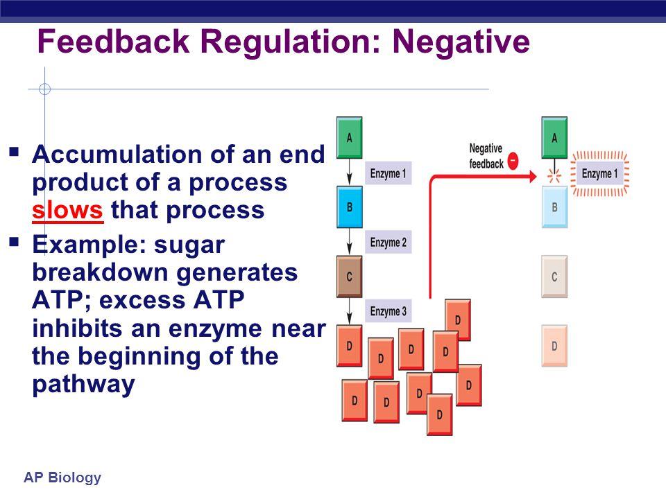 Feedback Regulation: Negative