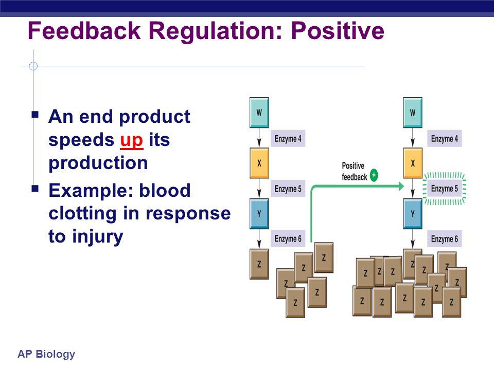 Feedback Regulation: Positive