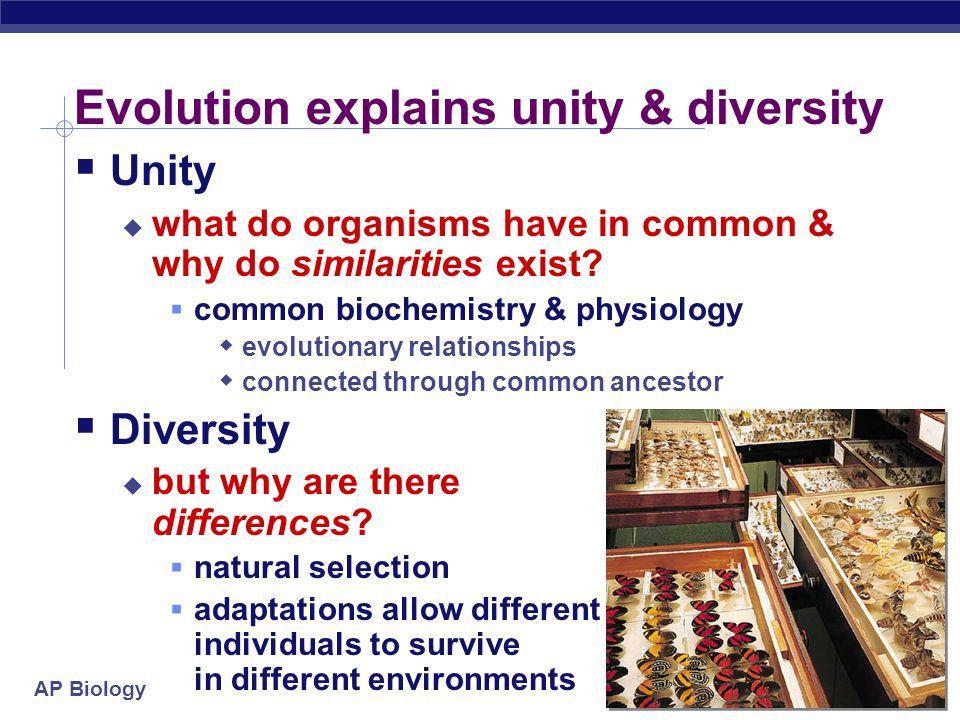 Evolution explains unity & diversity