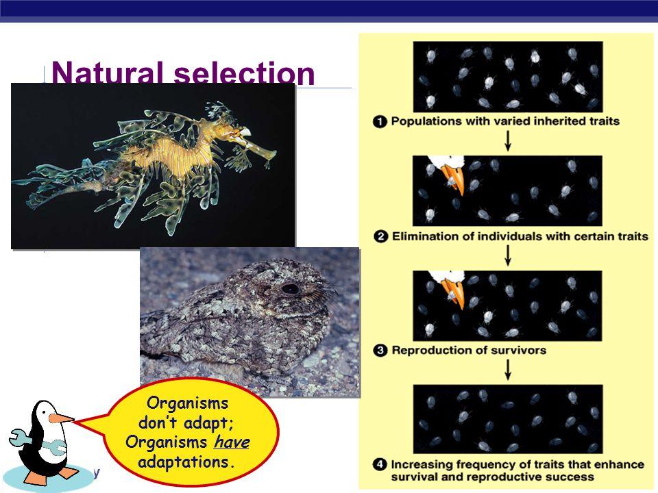 Organisms don't adapt; Organisms have adaptations.