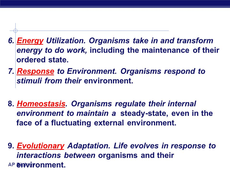 6. Energy Utilization.