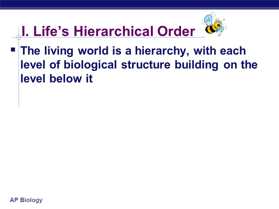 I. Life's Hierarchical Order