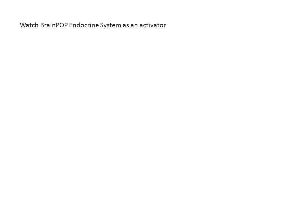 Watch BrainPOP Endocrine System as an activator