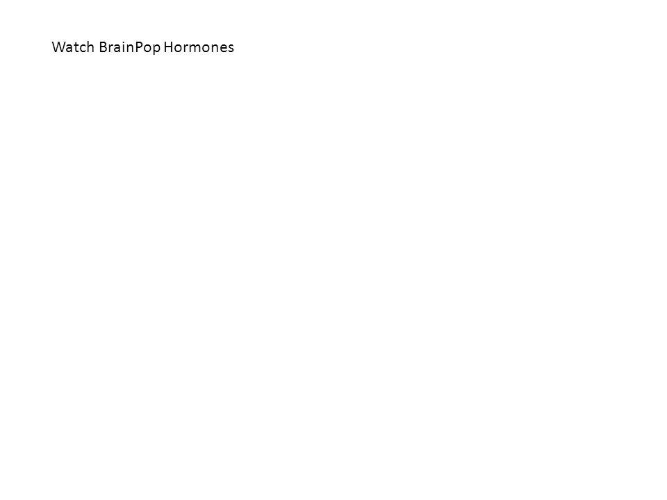 Watch BrainPop Hormones