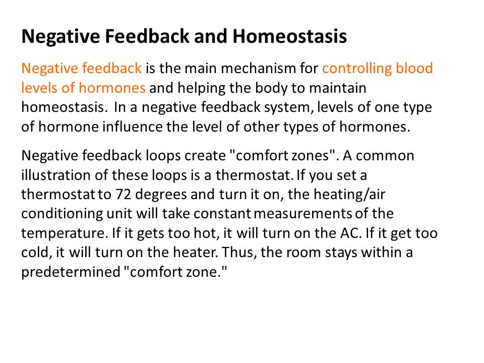 Negative Feedback and Homeostasis